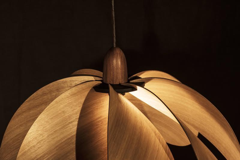 duncan-meerding-propeller-timber-3