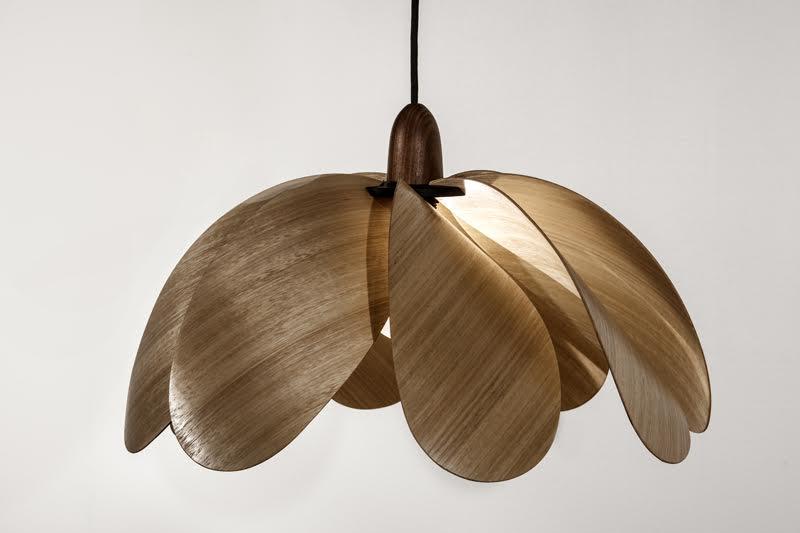 duncan-meerding-propeller-timber