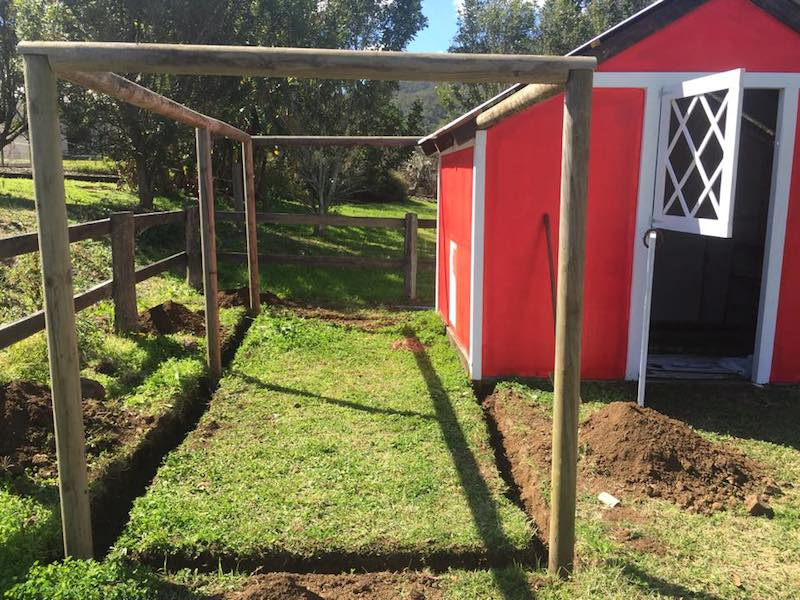 how to make a DIY chicken coop for under $300