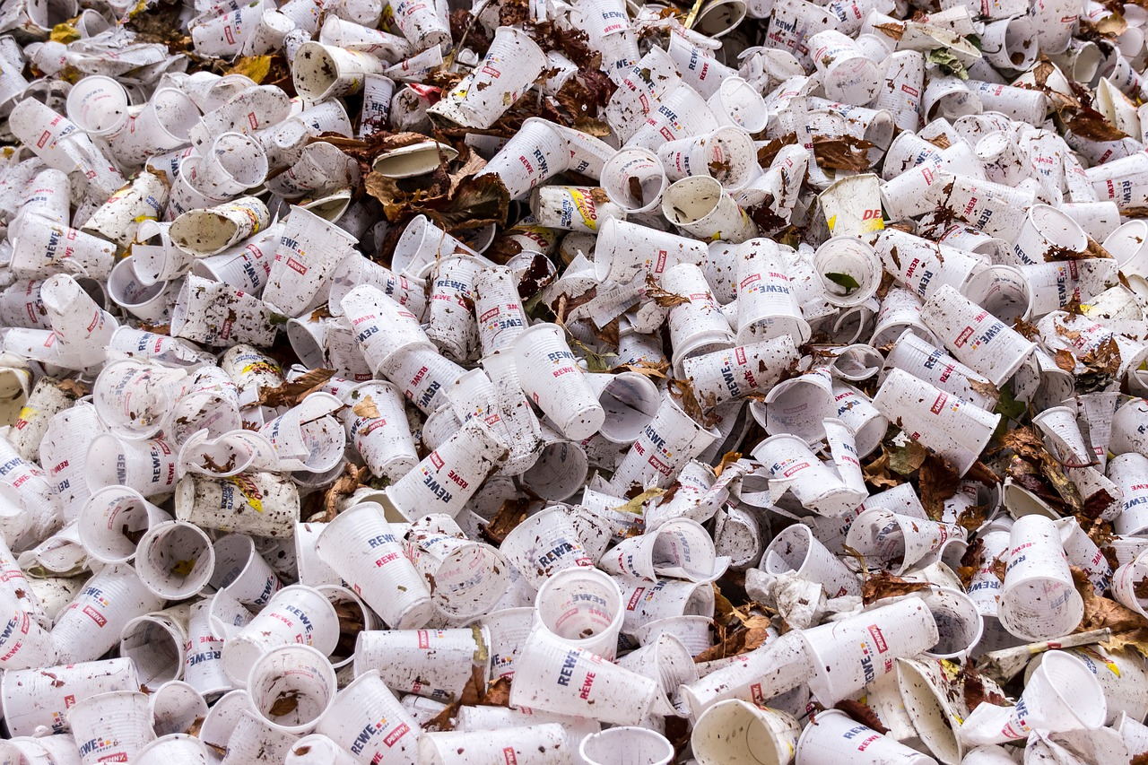 plastic waste and its impact on our environment