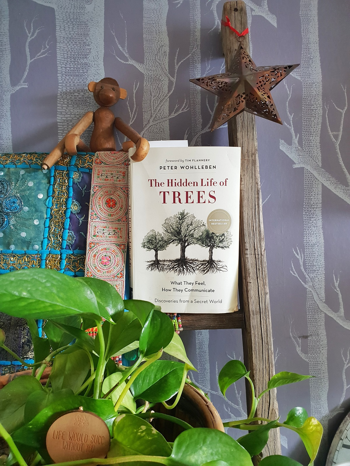 the write book club with Helen Edwards Author - book 1 The Hidden Life of Trees
